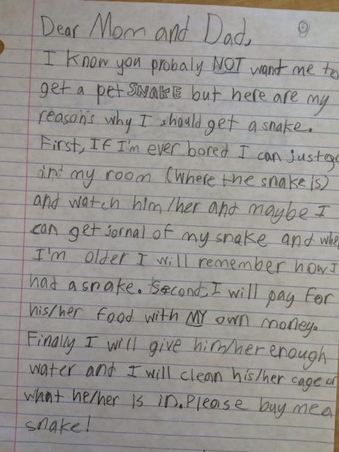 persuasive writing example yr 2