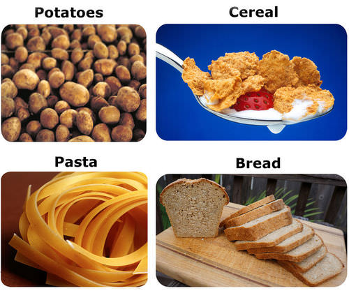 starch is an example of