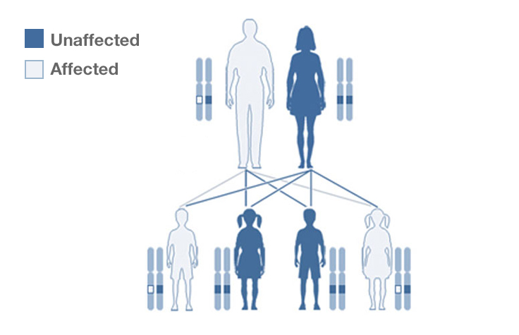 what is an example of a genetic disease